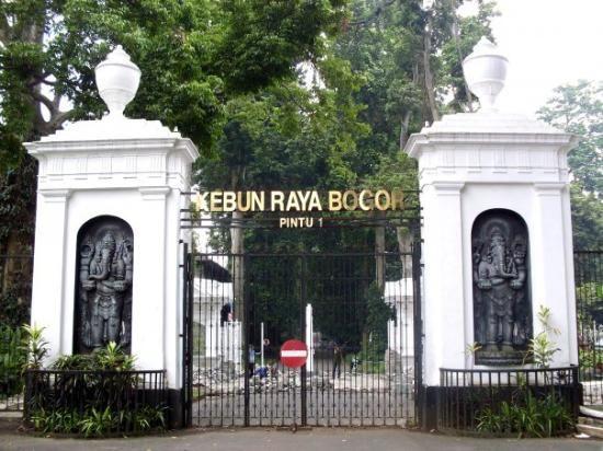 Kebun Raya Bogor - Mengunjungi Wisata Alam Bogor