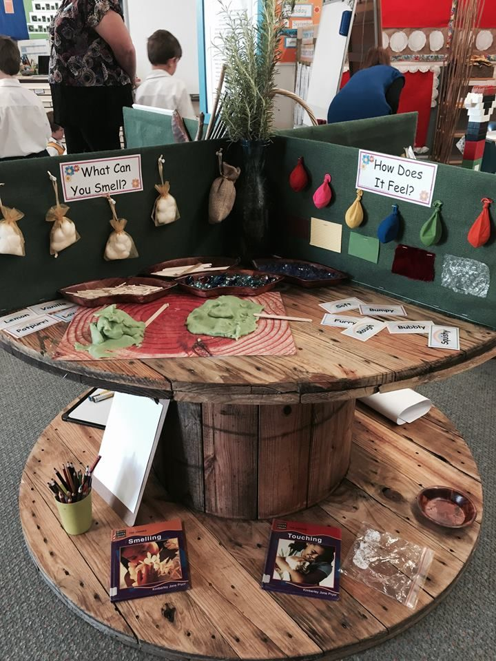Five Senses Station (from Early Life Foundations: Walker Learning; FB: https://www.facebook.com/WalkerLearningApproach/)