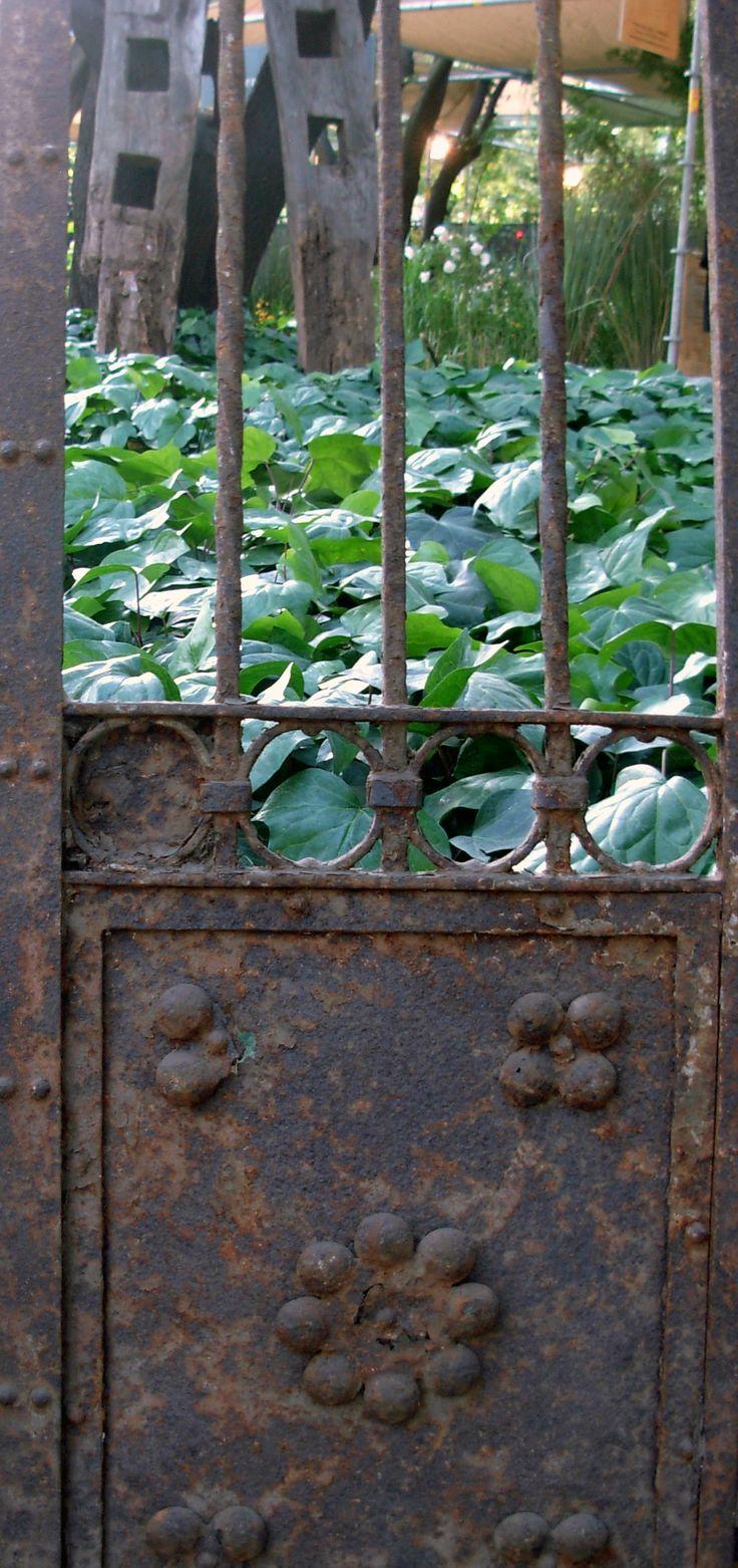 Portón de fierro y tranqueras