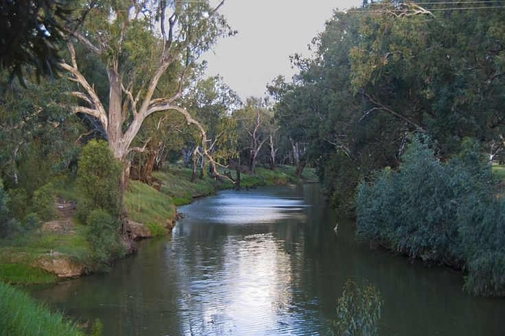 The Lachlan River flows - Condobolin, New South Wales