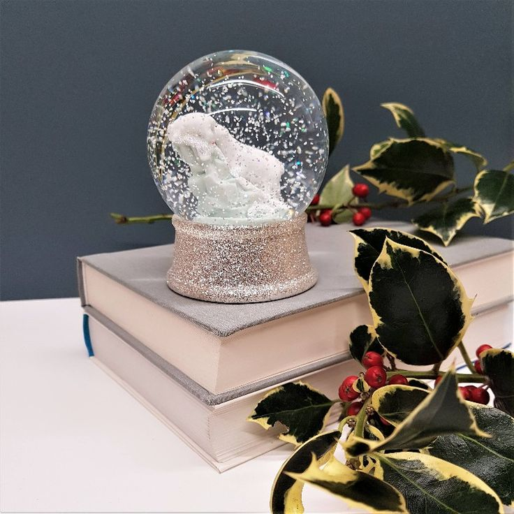 Excited to share the latest addition to my #etsy shop: Personalised Snow Globe   Polar Bear Christmas Snow Globe   Bear Snow Globe   Custom Glass Snowglobe   Christmas Gift Ideas   Snow Globes #christmas #giftforchild #snowglobe #stockingfiller #customsnowglobe http://etsy.me/2z19iGg