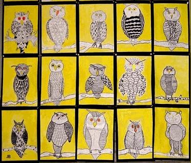 tekenen uilen