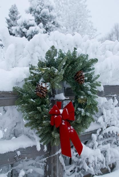 Christmas - more Christmas lusciousness here: http://mylusciouslife.com/a-luscious-christmas-part-one/ !!! Bebe'!!! Love this simple green fir wreath with a red velvet bow!!!