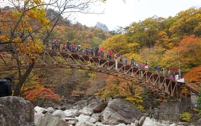 여행 가이드 #11 단풍따라 떠나는 설악산 등산 코스