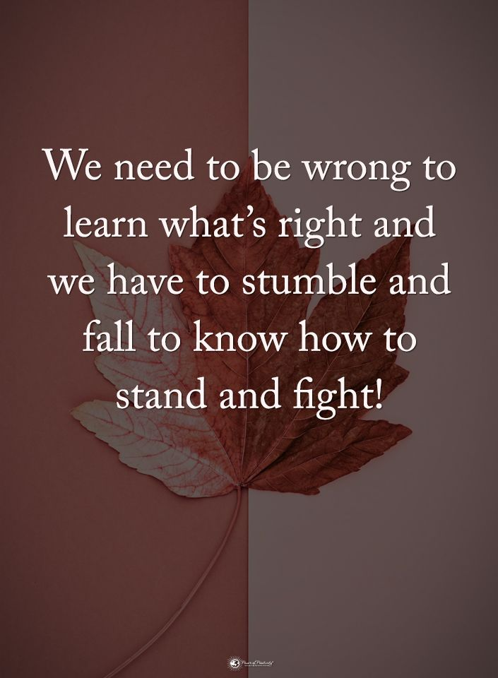 I Learned What's Right, I Fell A Lot Alright, And Now Its Time To Serve Whoop Ass, So I Must Stand And Fight.