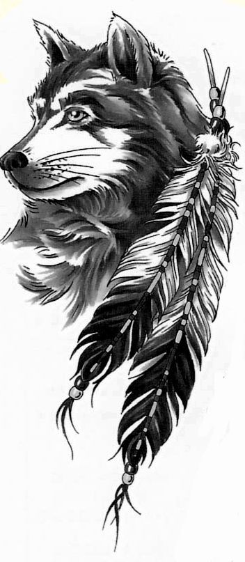 17 best ideas about native feather tattoos on pinterest for Wolf tattoo with feathers