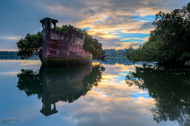 A 102-Year-Old Transport Ship Sprouts a Floating Forest. Learn more about this strange boat in Sydney at the link:  http://www.thisiscolossal.com/2013/06/a-102-year-old-transport-ship-sprouts-a-floating-forest