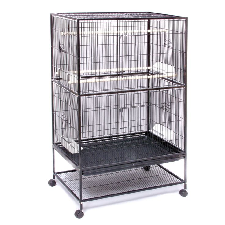 Have to have it. Prevue Pet Products Wrought Iron Flight Cage-Large F040 - $120.98 @hayneedle.com