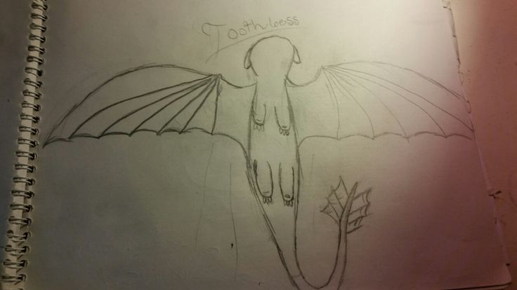 I drew toothless from httyd