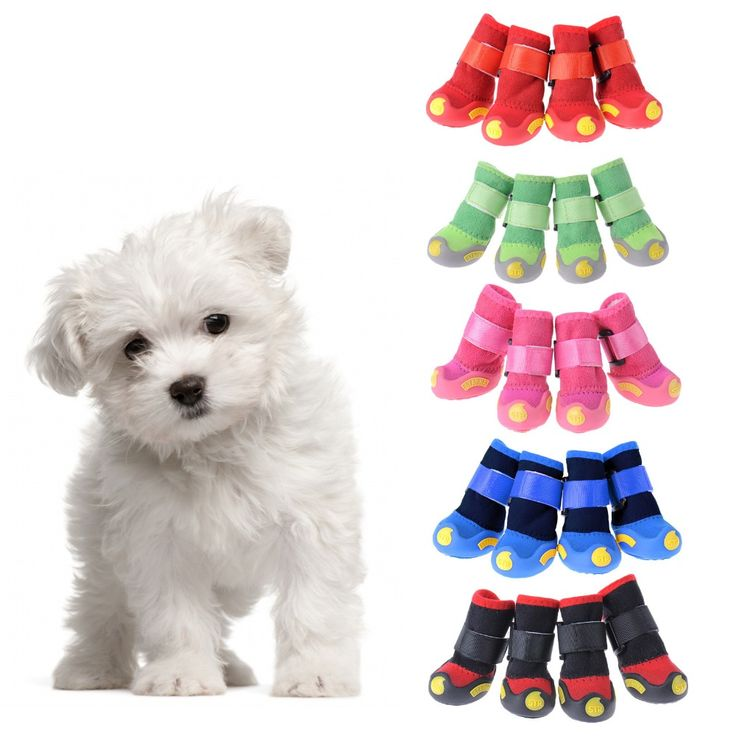 High Quality Brand New Portable Pet Dog & Cat Snow Shoes & Rain Boots Shoes Pet Supplier // FREE Shipping //     Get it here ---> https://thepetscastle.com/high-quality-brand-new-portable-pet-dog-cat-snow-shoes-rain-boots-shoes-pet-supplier/    #hound #sleeping #puppies