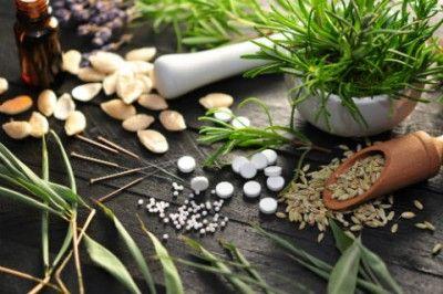 Antibiotiques naturels : propolis, tea tree, pamplemousse, cranberry, ail, ginseng, thym, echinacea purpurea, vinaigre de cidre