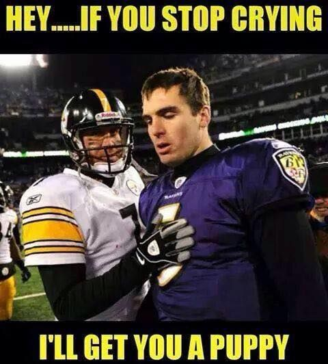 Ill Get You A Puppy Baltimore Ravens Hate Pittsburgh Steelers