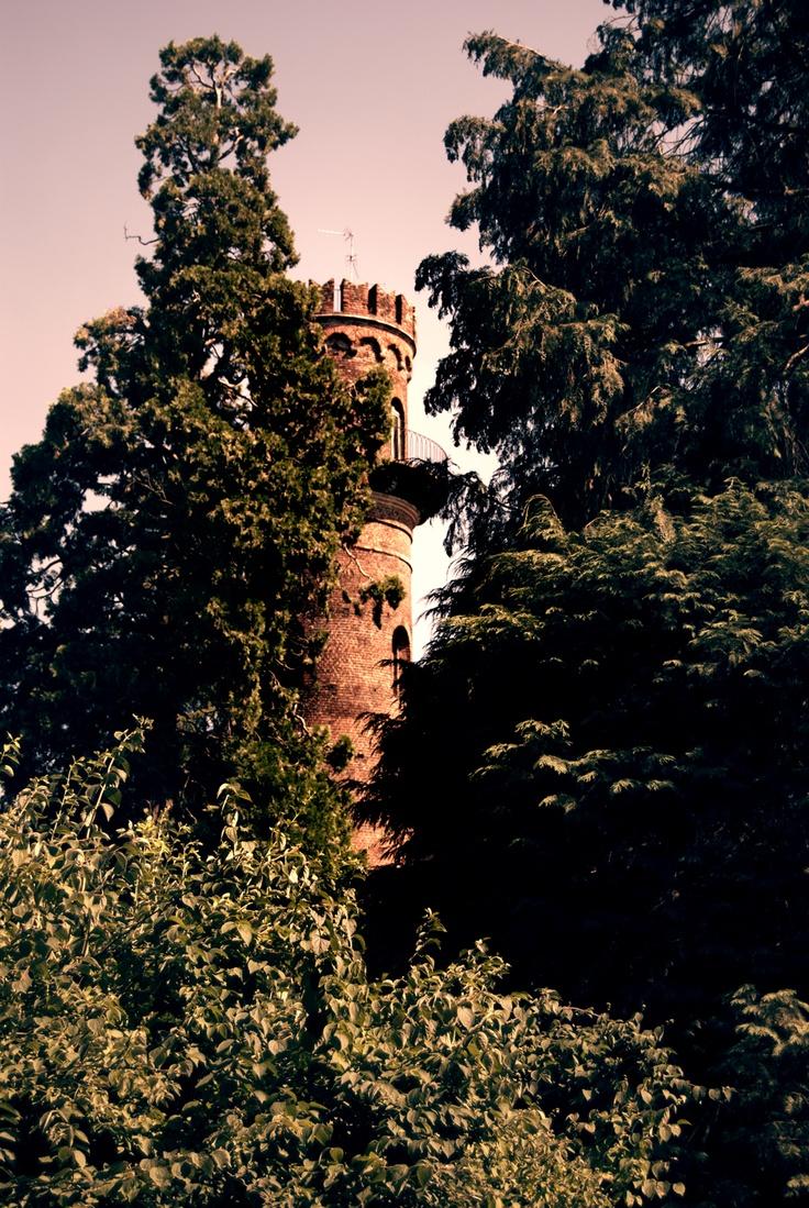small glimpse into the park of monza