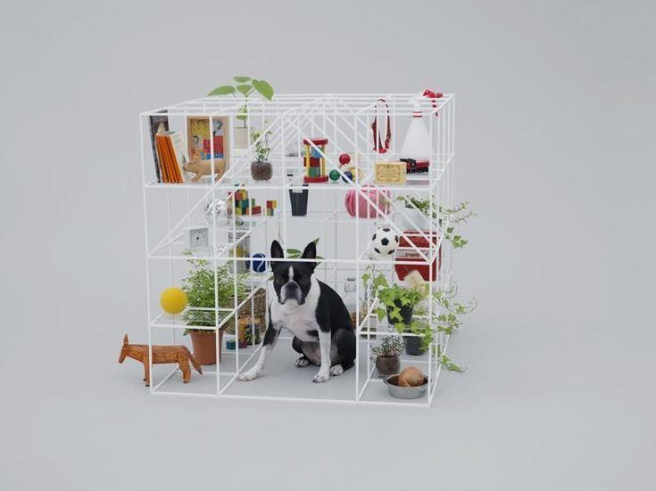 Sou Fujimoto / architecture for Boston terriers, photo by Hiroshi Yoda