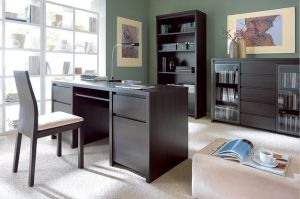 KASPIAN BRW Cabinet (Home Office). Kaspian Furniture is an ideal solution for those who search for functionality. Polish BRW Modern Furniture Store in London, United Kingdom #furniture #polish #brw #homeoffice