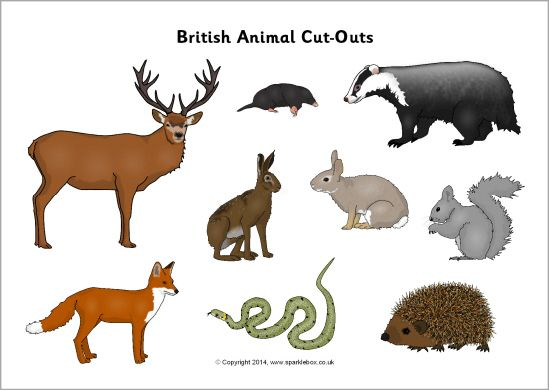 British animal cut-outs (SB10303) - SparkleBox