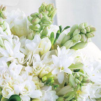 Bouquet of Hydrangeas and Tuberose