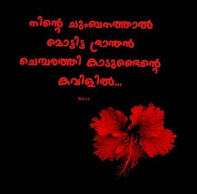 Pin By Nesna Haris On Pranayam With Images Writer Quotes Malayalam Quotes Crazy Feeling