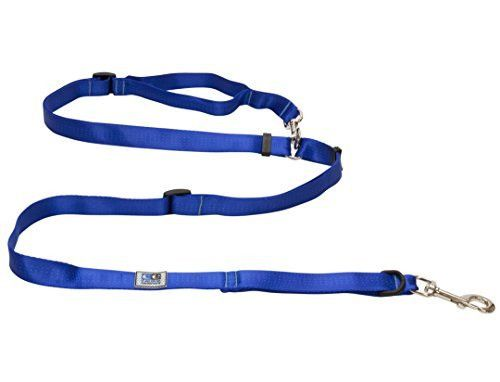 Canine Equipment 1-Inch Technika Beyond Control Dog Leash, Blue