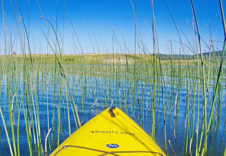 Everything You Need to Know About Visiting Cypress Hills Park