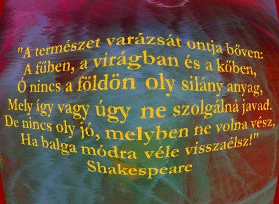 ..ez így igaz..., Ne csak a rosszat lásd meg...., Képre írt idézetek!, A szavak......,Nathaniel Hawfhrone--idézet,A boldogság azokra vár....., ..barátság..,..egyedül vagy tömeggel..., Hit--Bizalom--Remény, Megtanultam....., - bozsanyinemanyi Blogja - Gyurkovics Tibor, Képre írva...., Ágai Ágnes versei, BÚÉK!, Devecseri Gábor versei, Faludy György, Farkas Éva versei, Film., Gondolatok......., Gősi Vali-versei, Grigó Zoltán versei, Idézetek II, Játék!, Jókai Mór, Kamarás Klára versei…