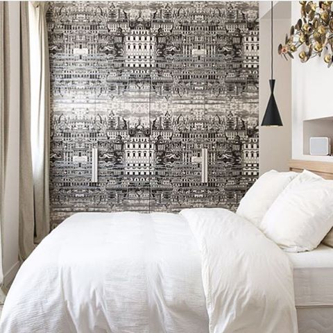 Removable Wallpaper For Apartments 85 best cole & son wallpaper images on pinterest | cole and son