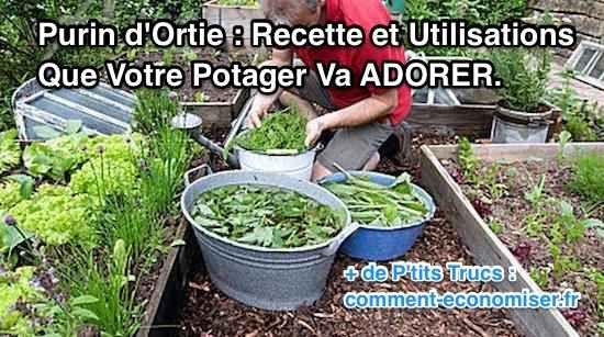 Voici la recette facile pour faire votre propre purin d'ortie à la maison !  Découvrez l'astuce ici : http://www.comment-economiser.fr/purin-d-ortie-engrais-et-insecticide.html?utm_content=bufferadeb3&utm_medium=social&utm_source=pinterest.com&utm_campaign=buffer