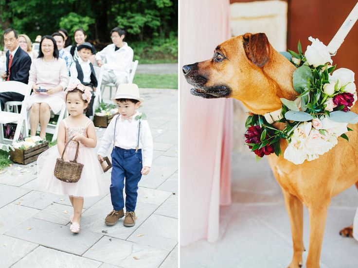 Ring Bearers Now: Furry Friends  Asking your little cousin to be the flower girl or ring bearer will never go out of style, but there's a new kind of cutie taking over the aisle: dogs. Couples' dogs are just as much a part of the family, and with ceremonies shifting away from traditional churches, there are more opportunities to incorporate canine companions in the wedding day.