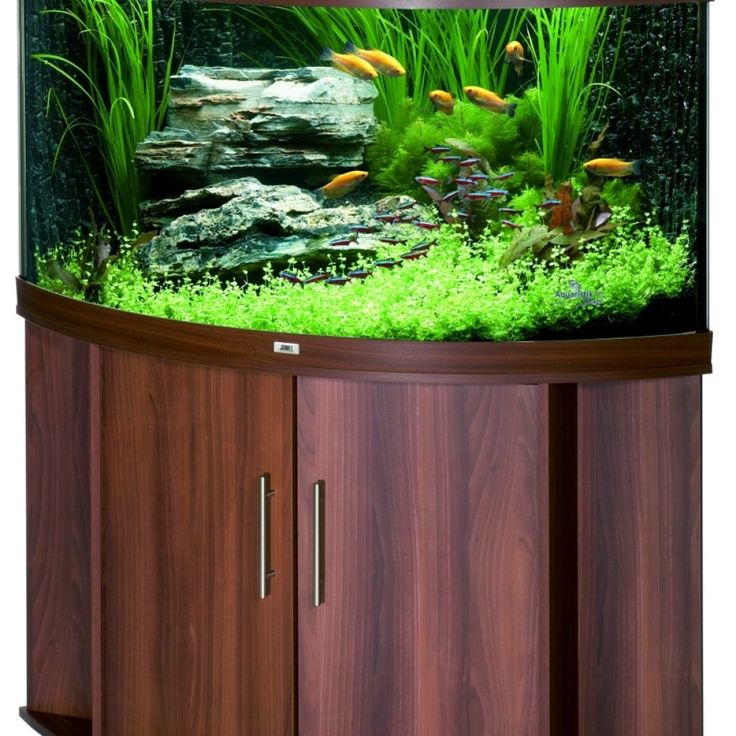 Juwel Trigon 350 Bow Front Corner Aquarium & Cabinet