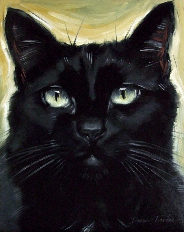 Black cat Cleo, oil painting by Diane Irvine Armitage.
