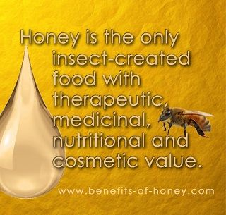 In honor of our honey-making friends, check out some interesting facts about bees at https://www.facebook.com/WonderfulSC