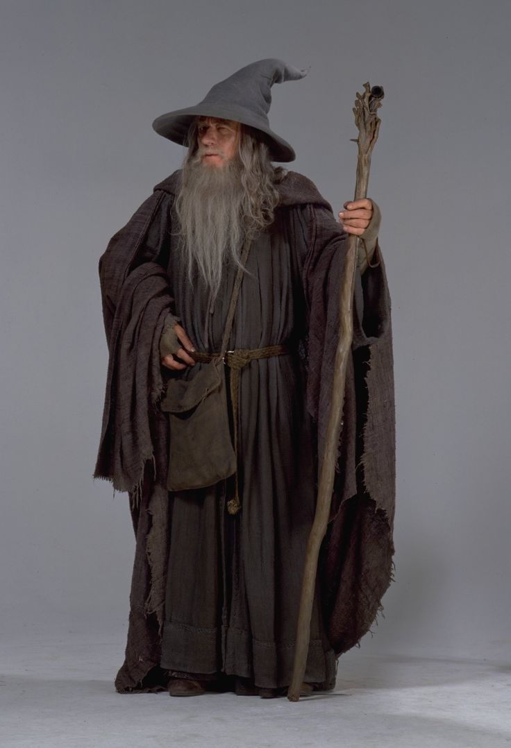 14 best Gandalf images on Pinterest | Gandalf, Costumes and ...