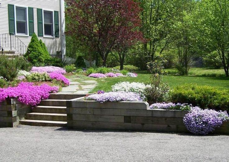 Les 149 meilleures images propos de id e jardin sur pinterest jardins arri re cours et pots - Phlox vivace couvre sol ...