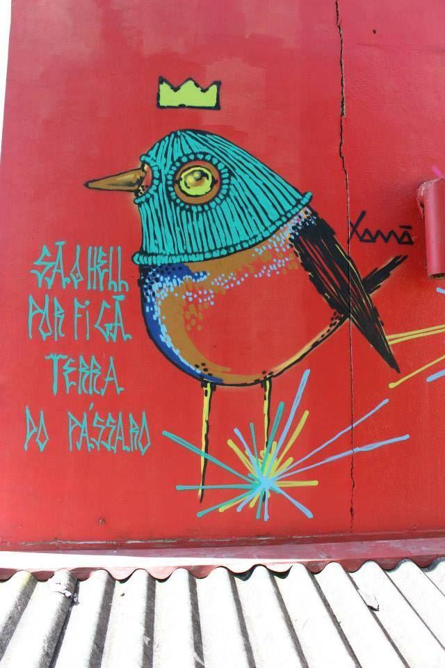 Toca ninja, Bird, Pássaro, Graffiti, Mateus Greff Xamã, São Leopoldo, Porto Alegre, Brasil