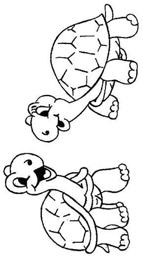 180 best Turtles images on Pinterest   Turtles, Kid drawings and ...