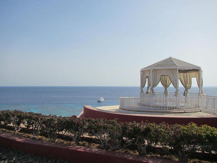 Отзыв об отеле Sentido Reef Oasis Senses Resort 5* в Египте, Шарм-Эль-Шейх от Vita111
