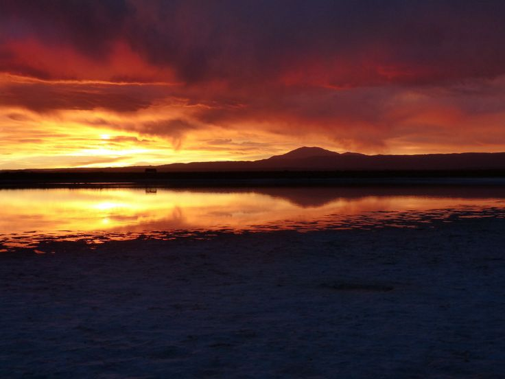 Laguna Cejar. San Pedro de Atacama