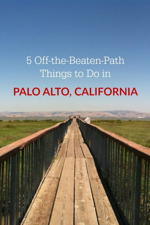 Visiting Silicon Valley or the Bay Area for work or vacation? Here are 5 lesser-known & locally-loved things to do in Palo Alto, California.