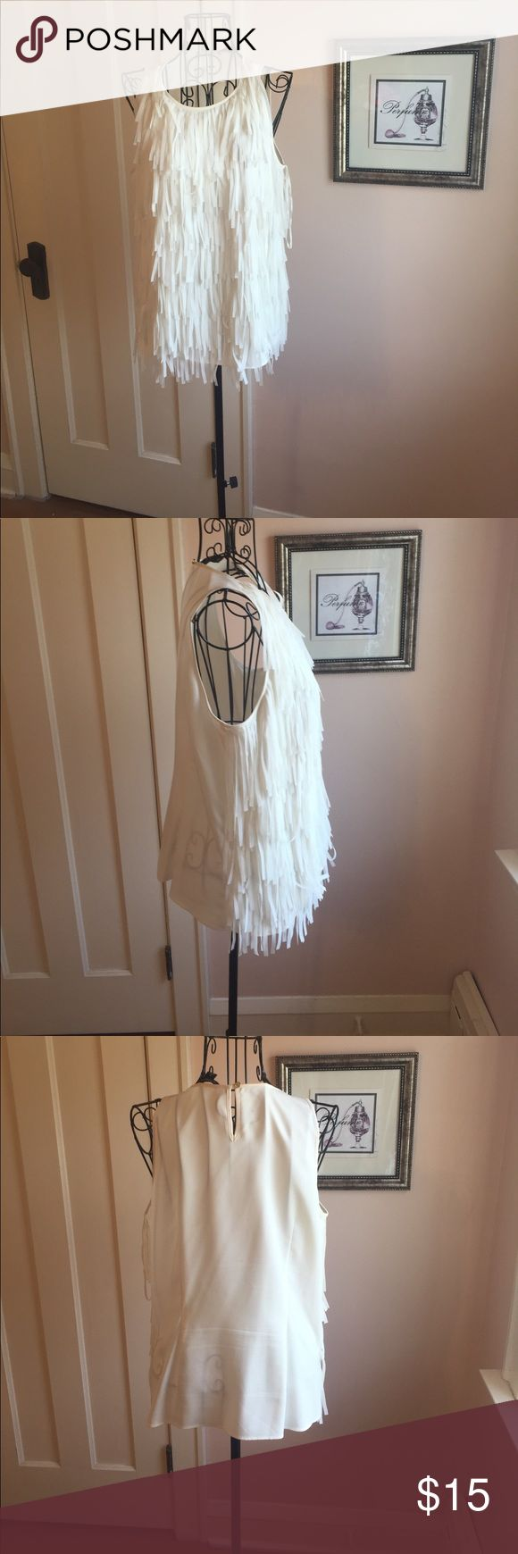 👚Ann Taylor Sleeveless Fringe Blouse NWOT This blouse has never been worn. The front is fully lined.      ⭐️⭐️⭐️⭐️⭐️ Five Star Rating 📫 Fast Shipper 🚭 Smoke Free Home 🚫 No Trades Ann Taylor Tops Blouses
