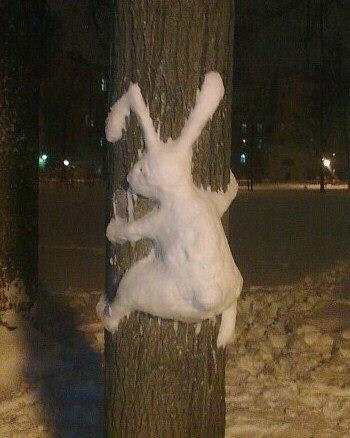 Snowbunny! /// #tree #snow #bunny #rabbit #snowman #snowball