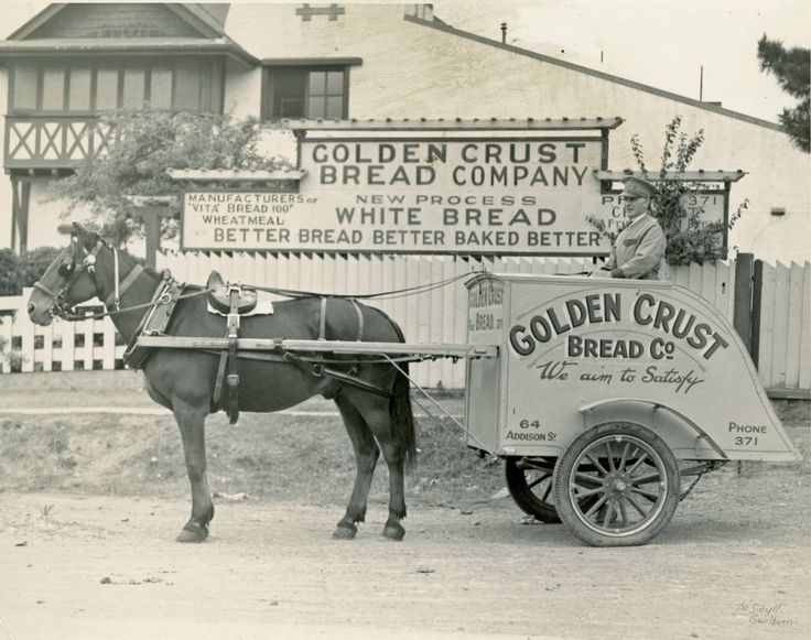 Gordon Wilson with Jack outside the Golden Crust Bread Company @ 64 Addison Street Goulburn, NSW.  c. 1938/9. The bakery was established by A R Thwaite.  Photo credit - John Thwaite