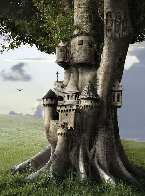 bluepueblo: Tree Castle, The Enchanted Wood photo via charity