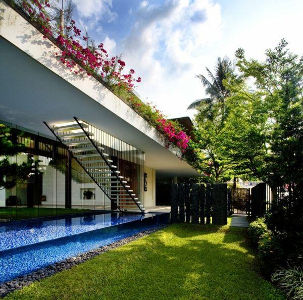 17 meilleures id es propos de toiture v g talis e sur pinterest patio en - Entretien toit vegetalise ...