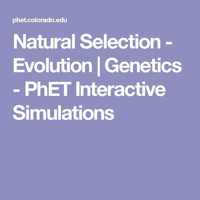 Phet Biology Natural Selection
