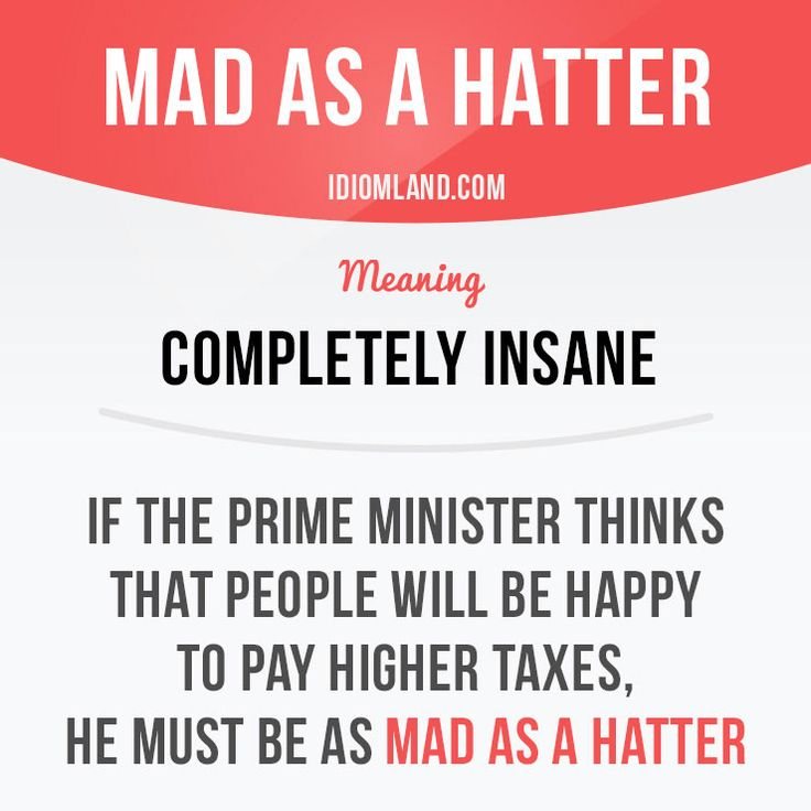 """""""Mad as a hatter"""" means """"completely insane"""". Example: If the prime minister thinks that people will be happy to pay higher taxes, he must be as mad as a hatter."""