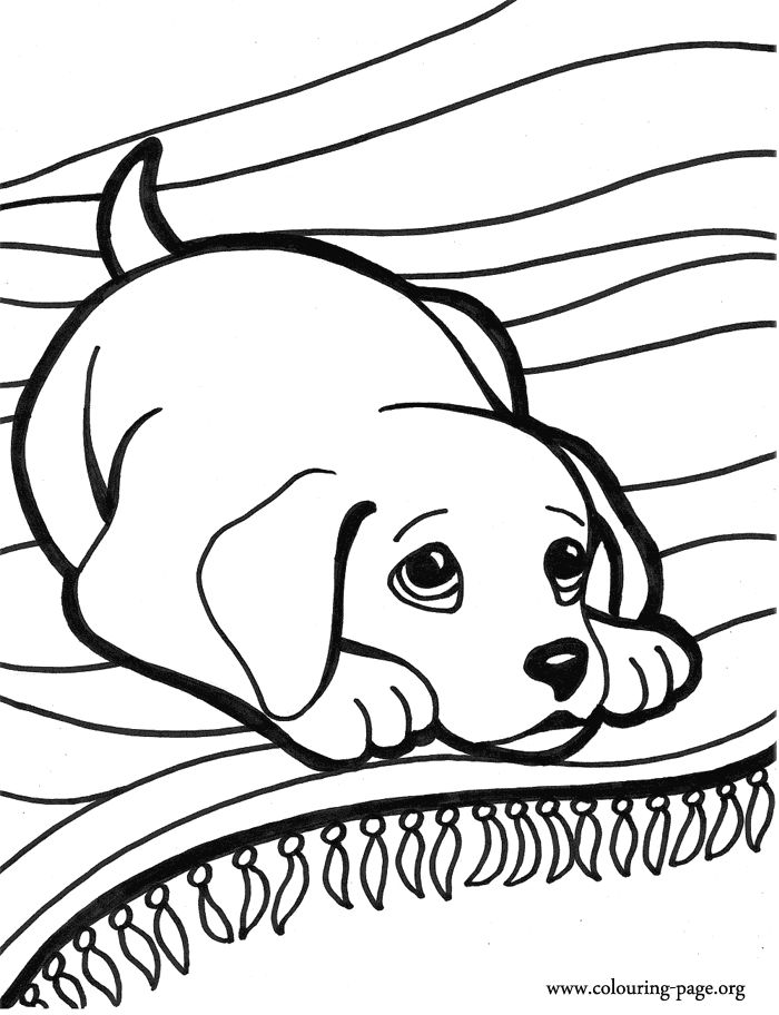 coloring pictures of puppys to print and color | Look at this cute ...