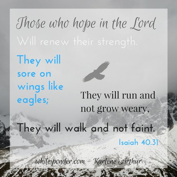 Those who hope in the Lord will renew their strength...