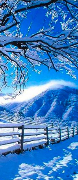 ice blueWinter Snow, Blue Sky, Ice Blue, Beautiful Places, Winter Wonderland, Amazing Colors, Blue Winter, Blue Beautiful, Beautiful Winter