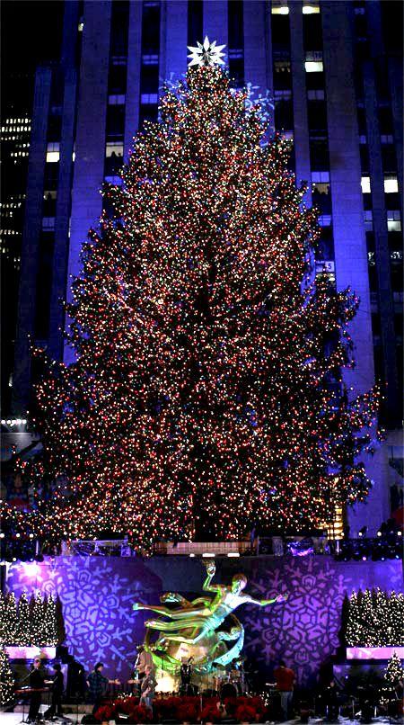 Rockefeller Tree Close Up