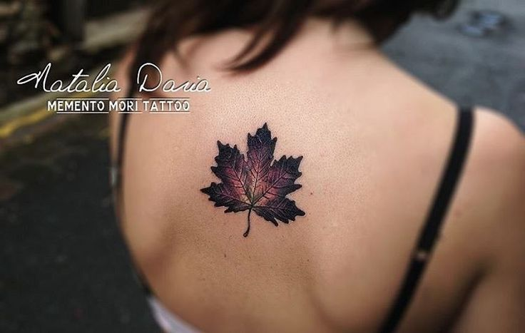 Leaf tattoo                                                       …